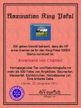 King Award Nominationsurkunde Anne Chamier