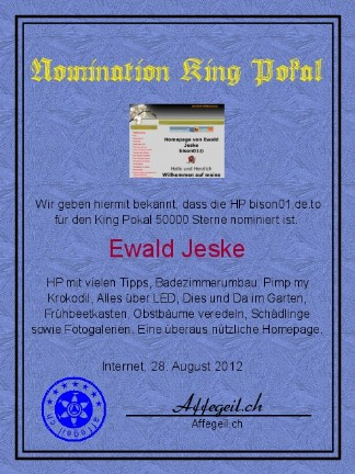 King Award Nominationsurkunde Bison01
