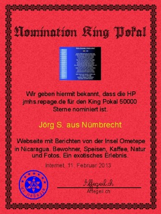 King Award Nominationsurkunde JMHS