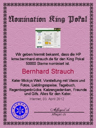 King Award Nominationsurkunde KMW Bernhard Strauch