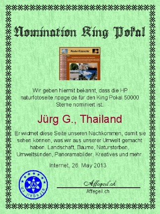 King Award Nominationsurkunde Naturfotoseite
